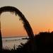 CassJustCurious 2009-01-19