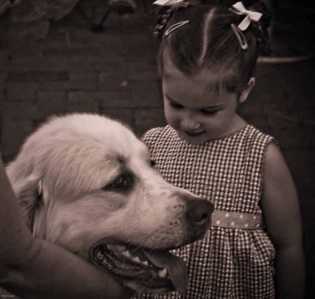 Winston Salem Dog Rescue