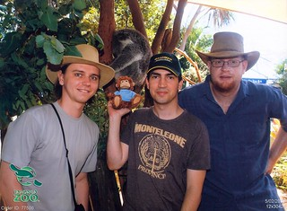 Arty, Ab, and Michael meet a koala | by emilyboyd