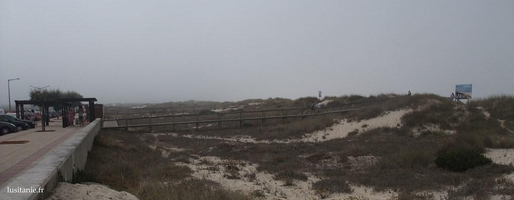 Dunes de sable, plage de Tocha
