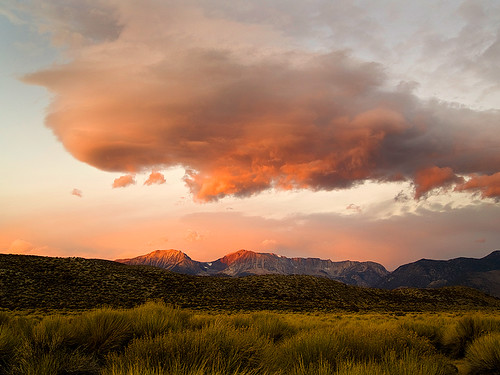 East side storm clouds above rabbitbrush | by MistyDays / CB