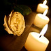 a rose for our former president cory aquino
