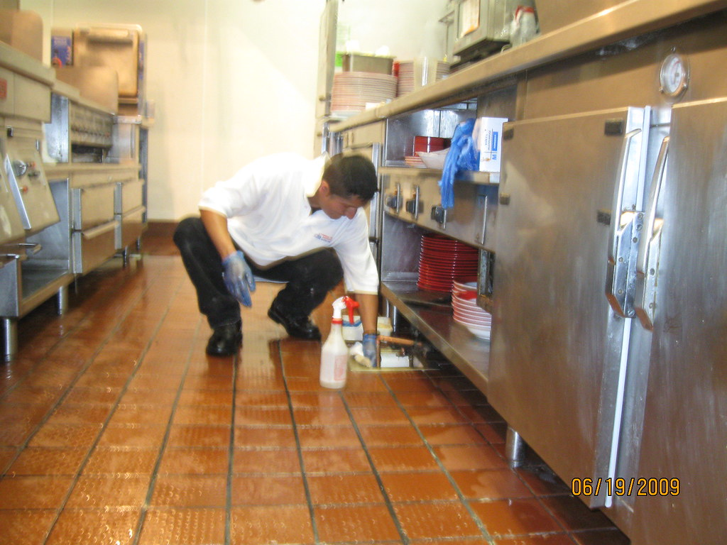 New York Restaurant Cleaning David Bruce Jr Flickr