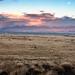 Albuquerque Sunset (13 of 13)