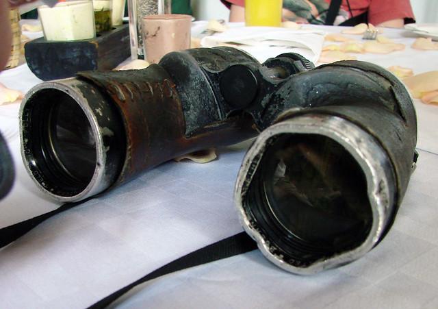 Chandler Robbins's binoculars