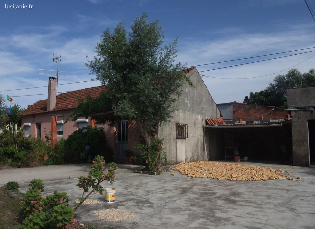 Maison avec son eira, avec les grains de maïs qui sèchent...