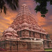 temple rose - gangaikondacholapuram.JPG