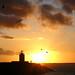 Winter sun hits the lighthouse of Velsen