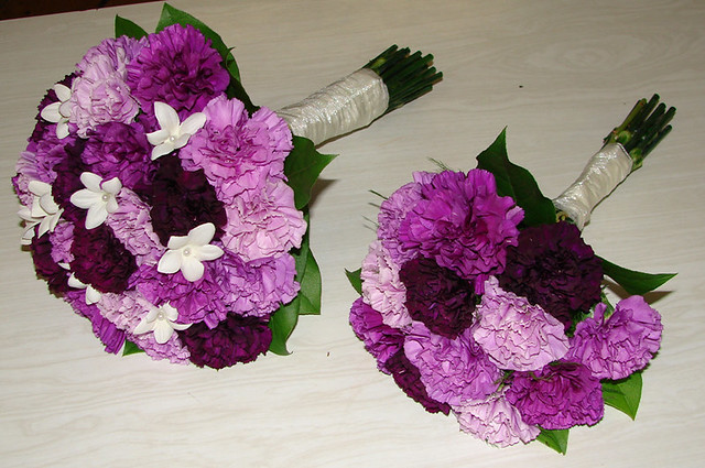 carnations wedding bouquet purple carnation wedding bouquets florigene carnations 2462