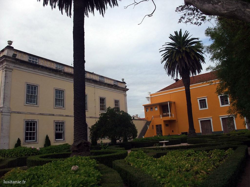 Très joli jardin, avec les palmiers qui se détachent des murs colorés