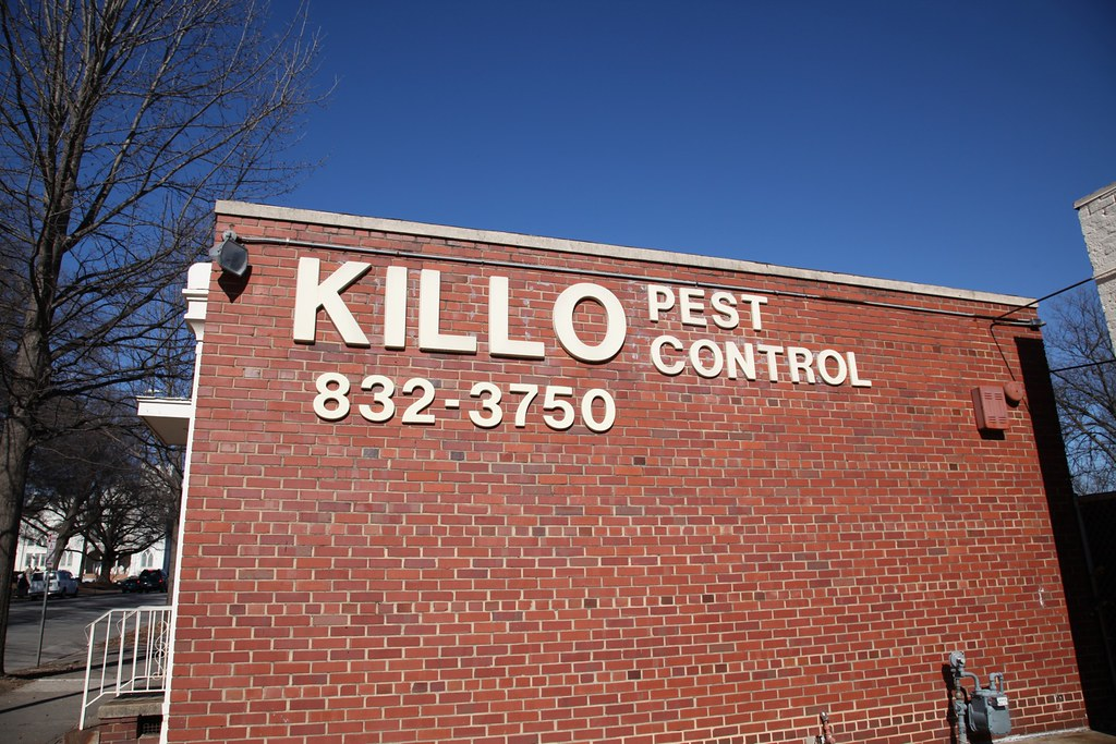 Pest Control New York Bed Bugs