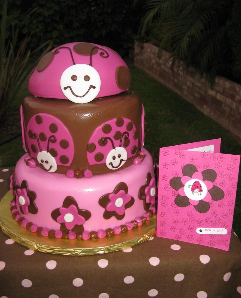 pink lady bug cake pink lady bug cake thecakemamas