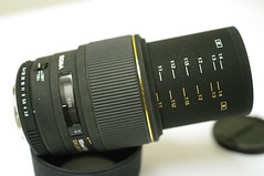 IMGP6606