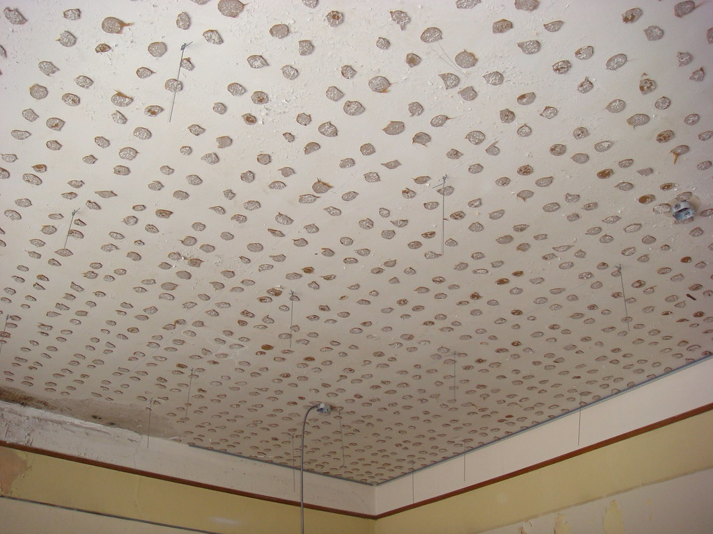 Ceiling Tile Asbestos Adhesive | With a suspended 2'x4 ...