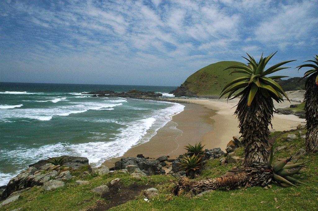 transkie wild coast