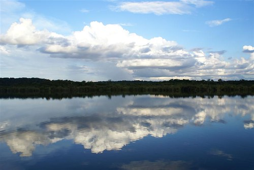Reflections on the Rio Negro | by chrisparkeruk
