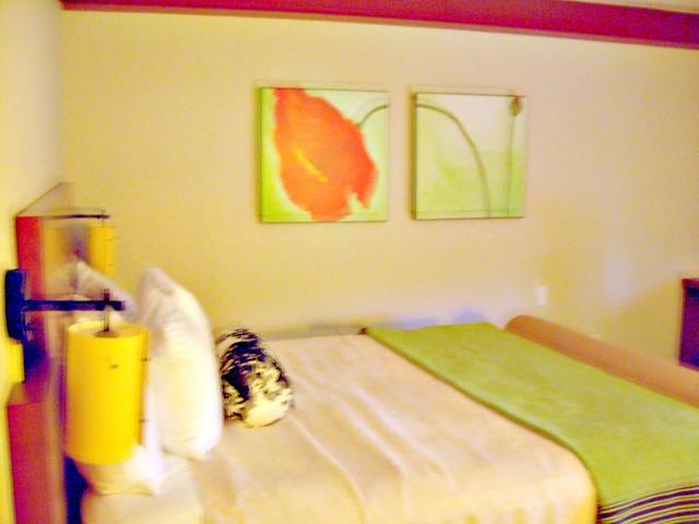 La Quinta Inn Brooklyn Downtown Bed Bugs