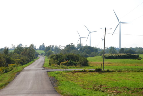 Birds, Bats and Wind, PHoto of Maple Ridge Wind Farm on the TUg Hill Plateau. Photo by David Chanatry | by WNPR - Connecticut Public Radio