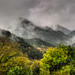 Rainy Autumn Day in Orriols