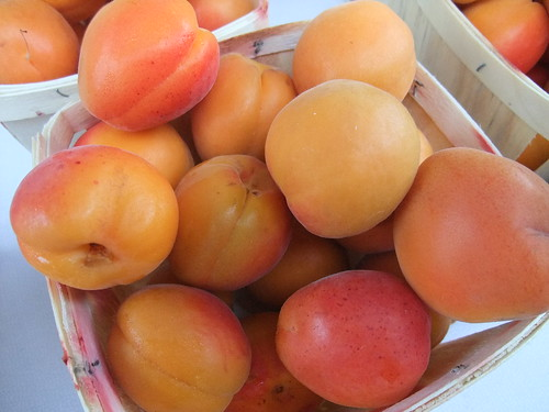 Apricots from Wayward Seed Farm | by swampkitty