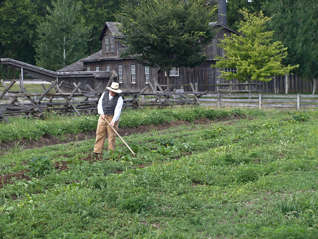 Farming The Old Fashioned Way They Have A Working 1800