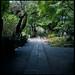 sound of stillness #3