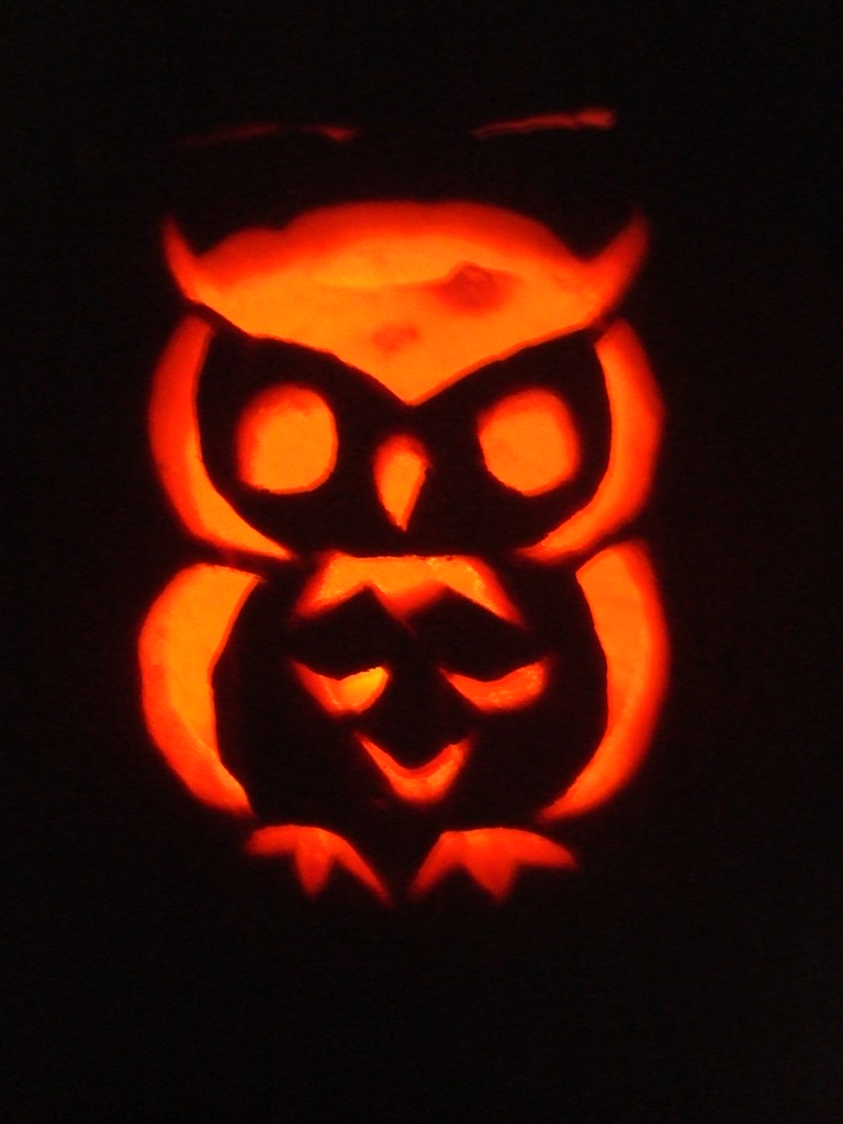 Our carved owl ciderandfaun spot pumpkin