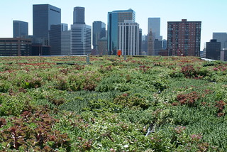 A Green Roof in the Heart Denver | by usepagov