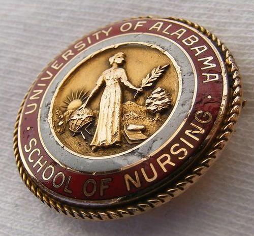 Nurse PINNING Ceremony Gift, RN Nursing Pin, RN Nurse ...  |Nursing Graduation Pins