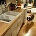 Ebay Kitchen Sink Faucet