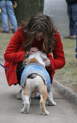bts aww she really love that bulldog d i love blair