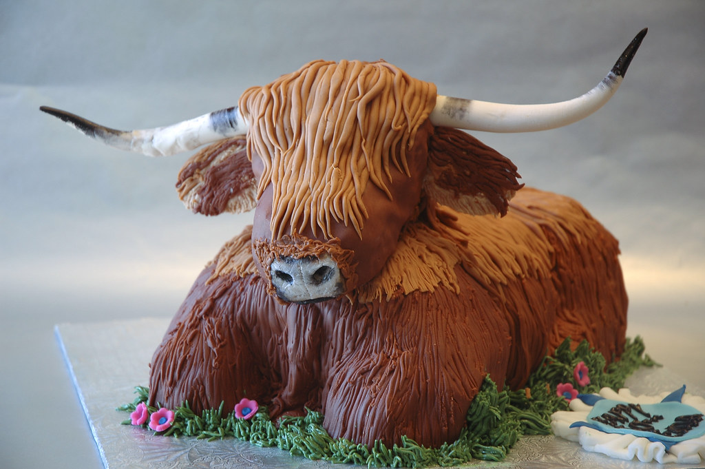 Highland Cow This Cake Was Made For A 50th Birthday For