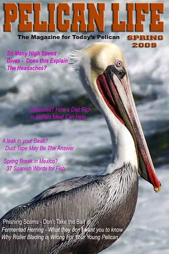 Pelican Life Magazine Spring 2009 | by Bill Gracey