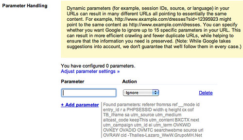 Google Parameter Handling | by rustybrick