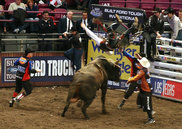 Professional bull riders pbr built ford tough 2009 - Bull riding madison square garden ...