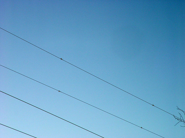 Wires with flight diverters in place