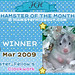 Hamster-of-the-Month-Award-Cert-Mar2009