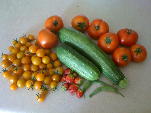 Garden Harvest 7/16/09 | by swampkitty
