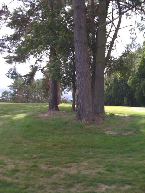 baltic hills golf club usedom hole 13 flickr photo sharing. Black Bedroom Furniture Sets. Home Design Ideas