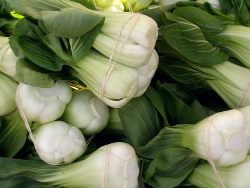 Bok Choy | by The Marmot