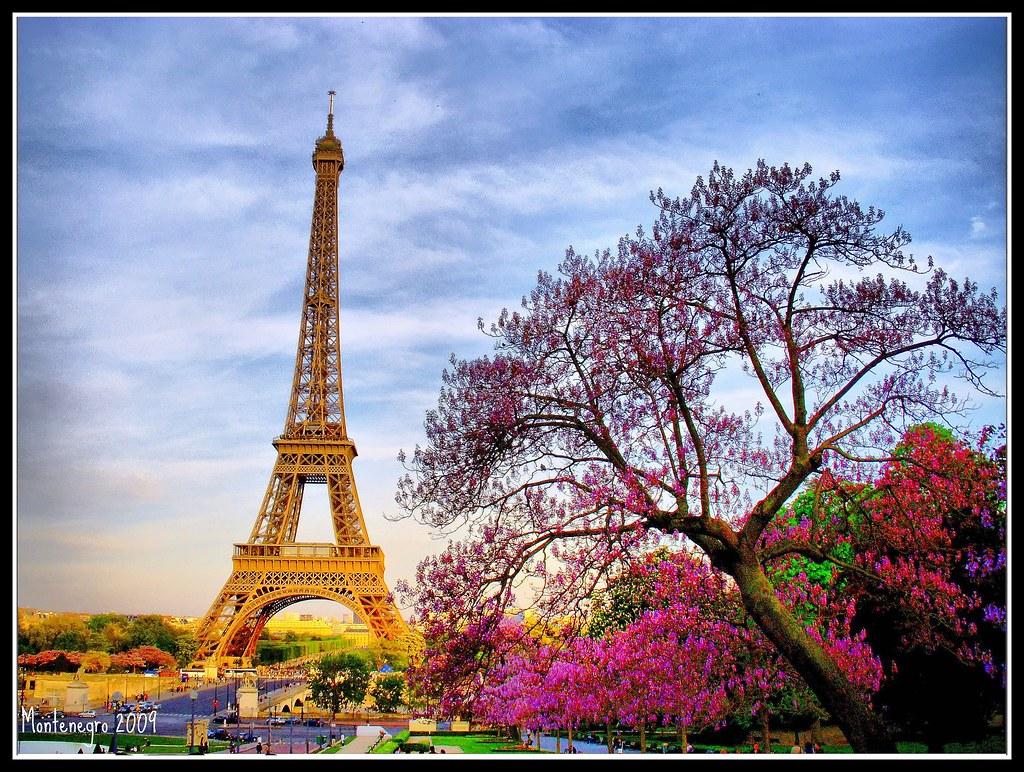Torre Eiffel Dibujo Animado A Color: #Paris #Eiffel Tower #France #Francia #Torre Eiffel #Luis