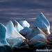 Iceberg: Gaudi Rooftop