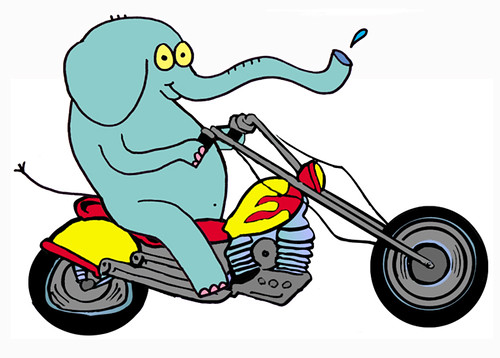 Custom Motorcycle Graphic Designs