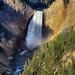 Lower Yellowstone Falls, Yellowstone National Park #2 of 3