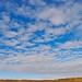 Blue Autumn Skies