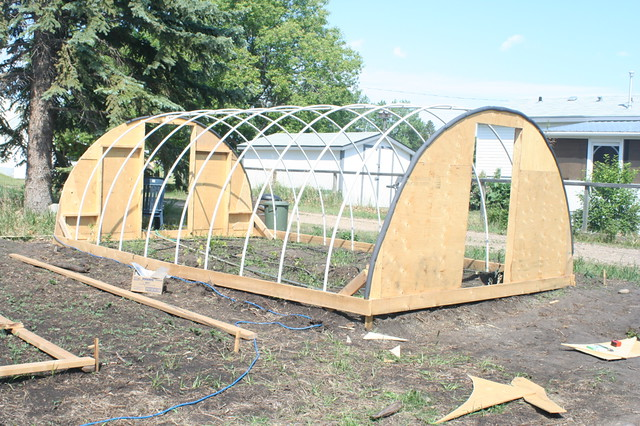 ... albertahomegardening My third hoop style greenhouse   by albertahomegardening & My third hoop style greenhouse   Made of pvc pipes and plywou2026   Flickr