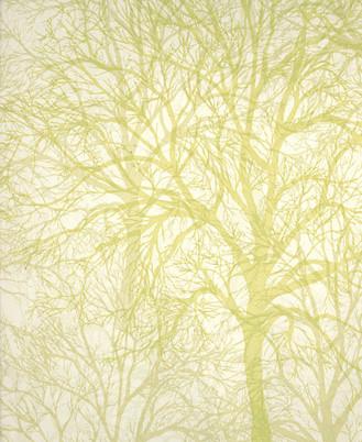 Modern wallpaper: Tree print by Graham & Brown | Detail of ...