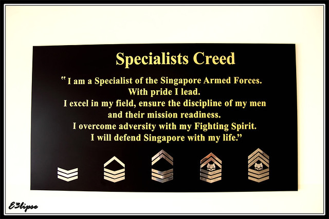 AOH 09 : Specialist's Creed | Wei Jie, Sng [Melvin] | Flickr