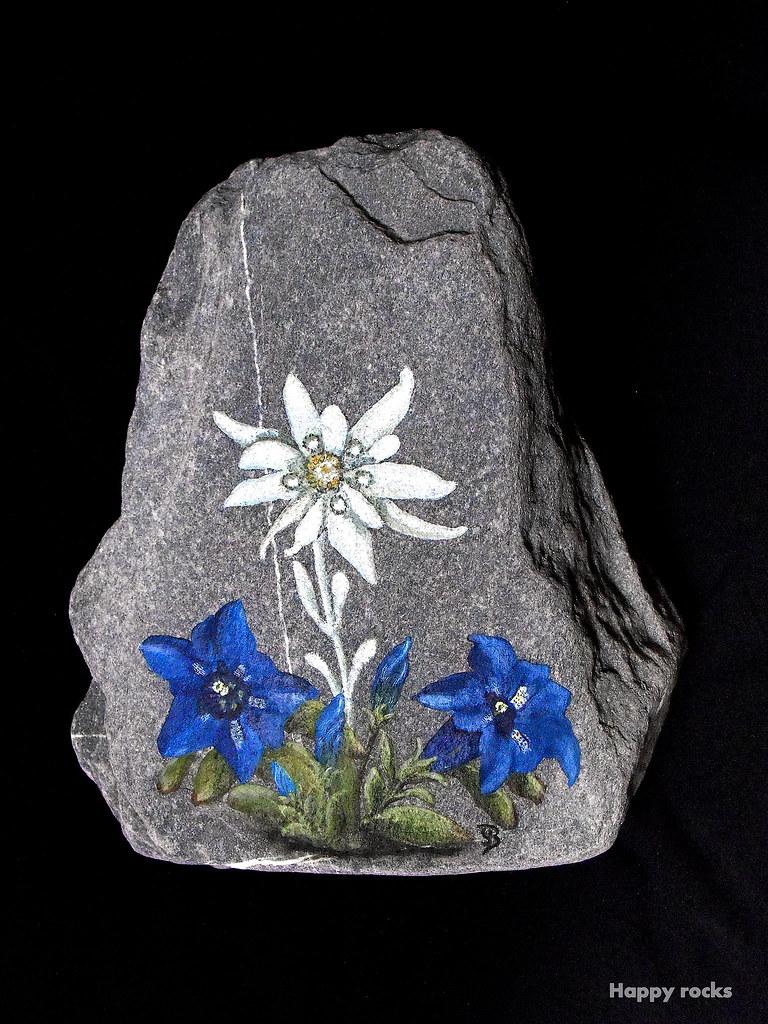 Edelweiss et gentianes happy rocks peinture sur granit p flickr for Peinture granit