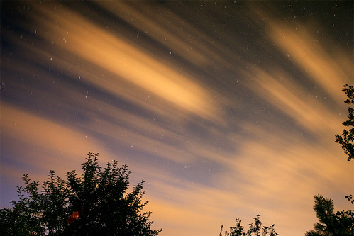 StarTrail CloudWash Orange Sky & Trees | by TylerKnott